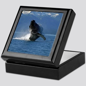 Humpback Whale Breaching Alaska Keepsake Box