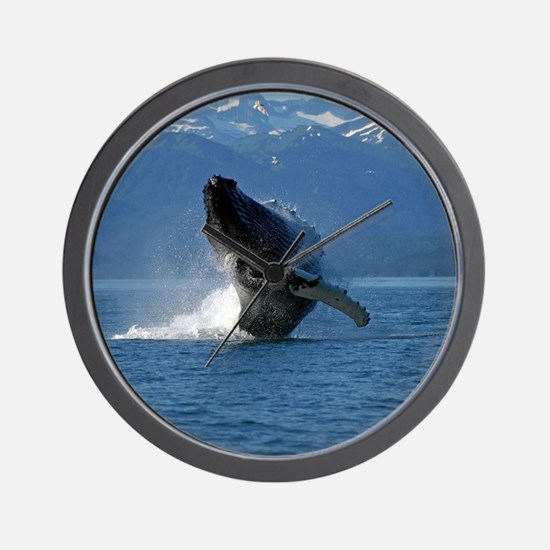 Humpback Whale Breaching Alaska Wall Clock