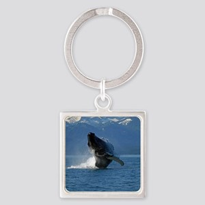 Humpback Whale Breaching Alaska Square Keychain