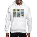 Tyrant Flycatchers Hooded Sweatshirt