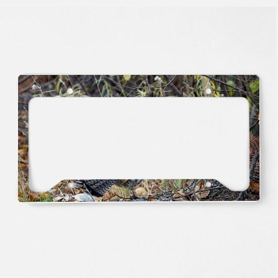 Partridge 3 License Plate Holder