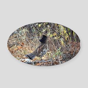 Partridge 3 Oval Car Magnet