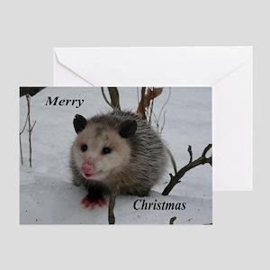 Snow Possum Greeting Cards