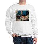 Fantastic Fractals Sweatshirt