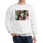 Incredible Images Fractal Sweatshirt