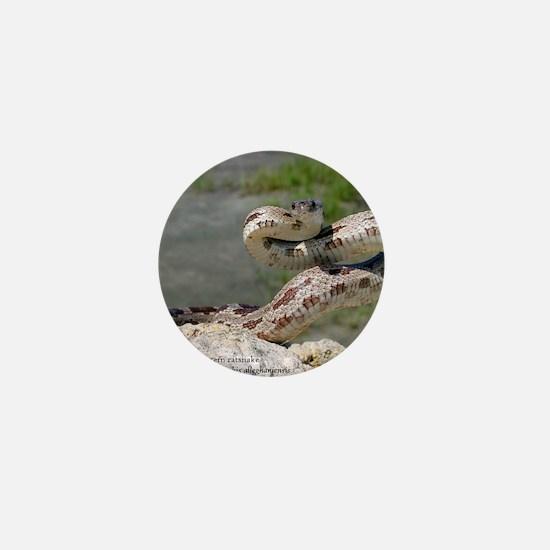 Cute Snake Mini Button