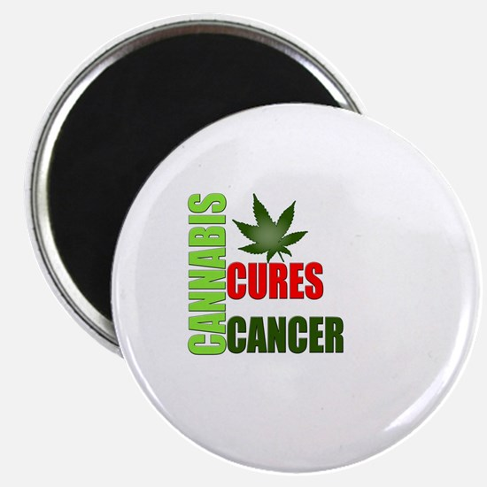 Cannabis Cures Magnet