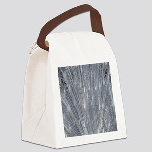 Silver Peacock Feathers Canvas Lunch Bag