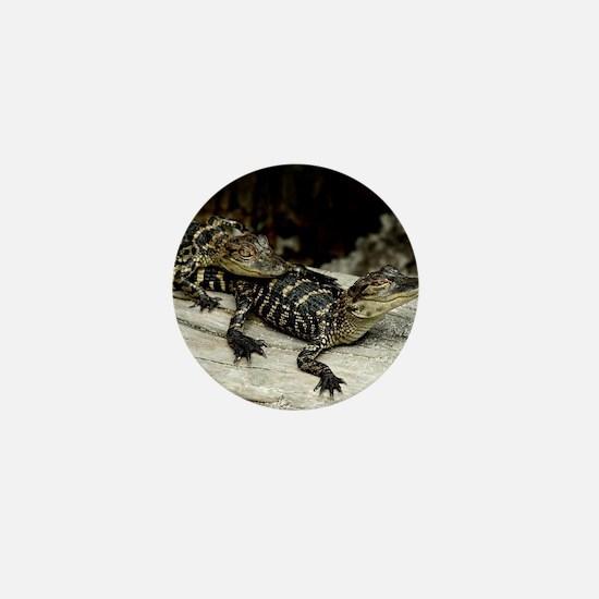 Cute Alligators Mini Button