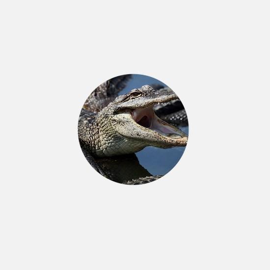 Images for Croc Calendar Mini Button