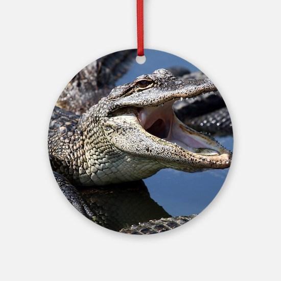 Images for Croc Calendar Round Ornament