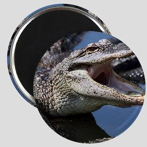 Images for Croc Calendar Magnet