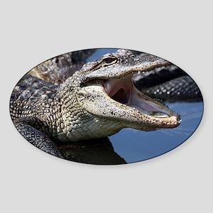 Images for Croc Calendar Sticker (Oval)