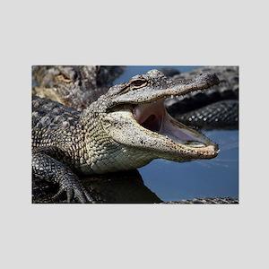 Images for Croc Calendar Rectangle Magnet