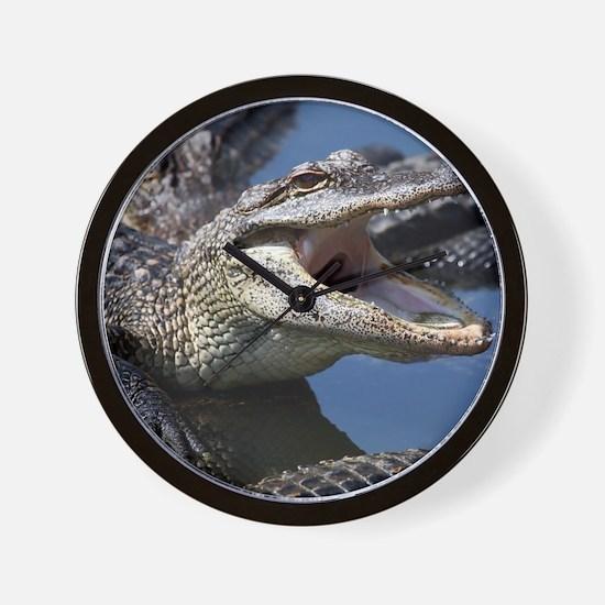 Images for Croc Calendar Wall Clock