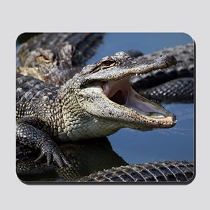 Images for Croc Calendar Mousepad