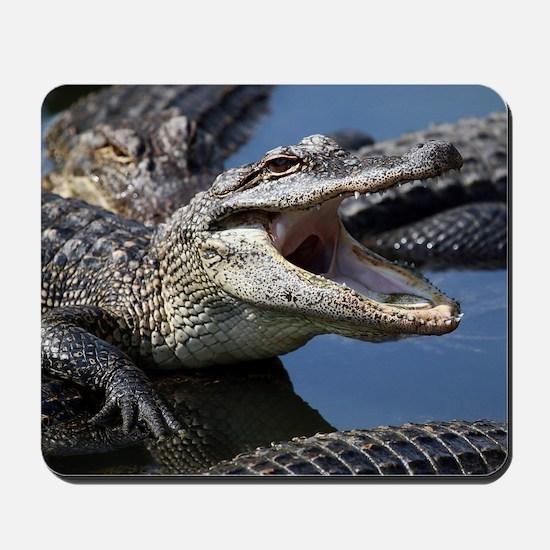 Images for Croc Calendar Mousepad