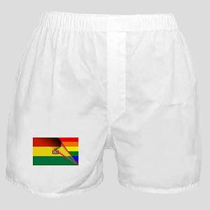 Bolivia Gay Pride Rainbow Flag Boxer Shorts