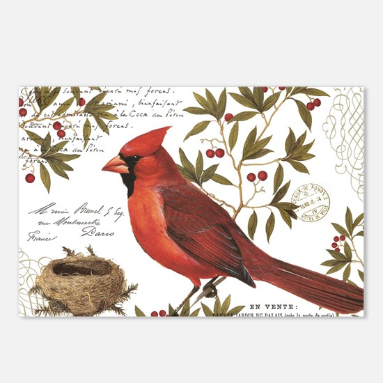 modern vintage winter woodland cardinal Postcards
