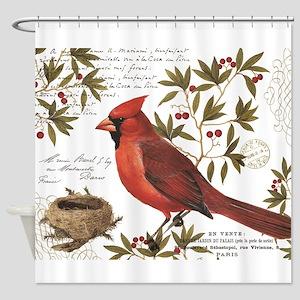 modern vintage winter woodland cardinal Shower Cur