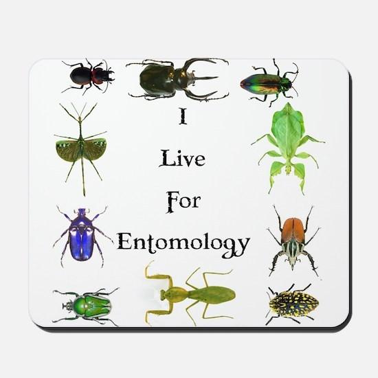 I Live For Entomology 1 Mousepad
