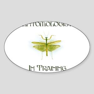 Entomologist In Training 4 Oval Sticker