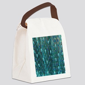 Shining Peacock Feathers Canvas Lunch Bag