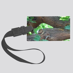 Tree Squirrel Large Luggage Tag