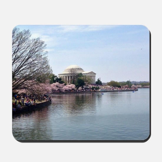 Blossoms in DC Mousepad