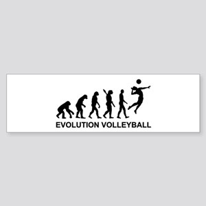 Evolution Volleyball Sticker (Bumper)