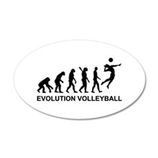 Evolution Volleyball Wall Decal