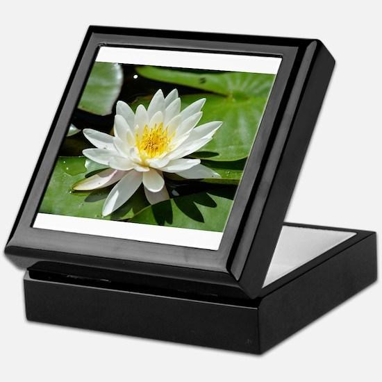 Cute Lotus massage Keepsake Box