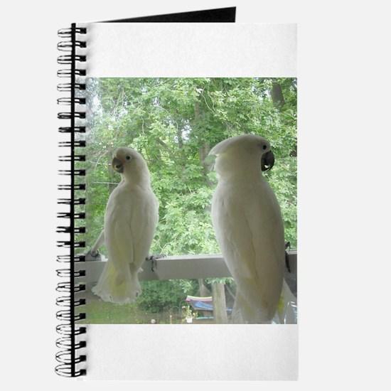 Cute Parrot Journal