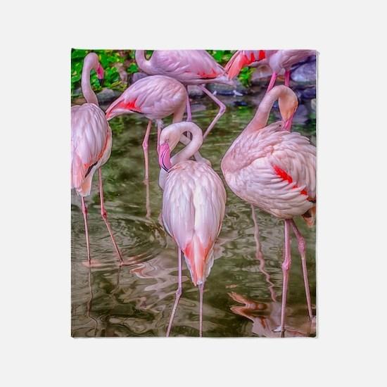 Pink Flamingos Throw Blanket