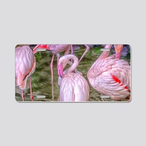 Pink Flamingos Aluminum License Plate
