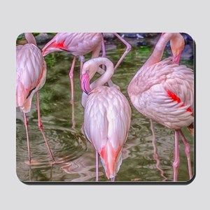 Pink Flamingos Mousepad
