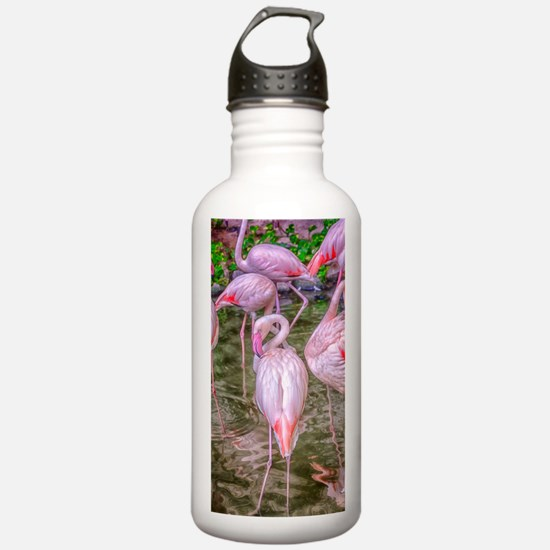 Pink Flamingos Water Bottle