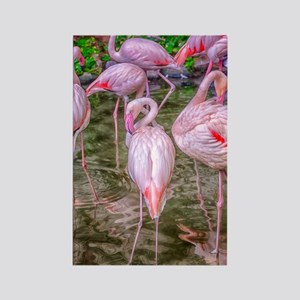 Pink Flamingos Rectangle Magnet