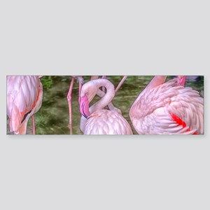Pink Flamingos Sticker (Bumper)