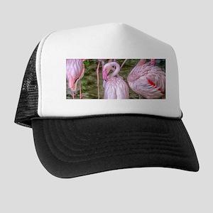 Pink Flamingos Trucker Hat