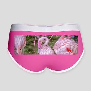 Pink Flamingos Women's Boy Brief