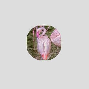 Pink Flamingos Mini Button