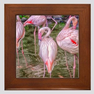 Pink Flamingos Framed Tile