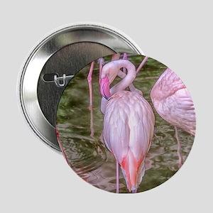 "Pink Flamingos 2.25"" Button"