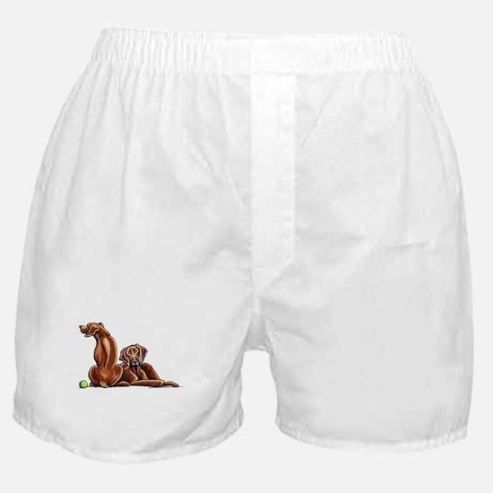 2 Ridgebacks Boxer Shorts