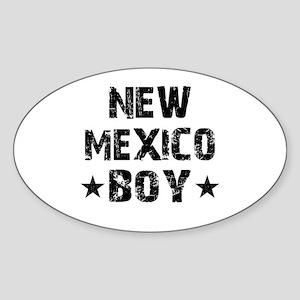 New Mexico Boy Sticker