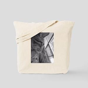 Sammy's Window Tote Bag