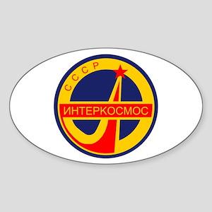 INTERKOSMOS Oval Sticker