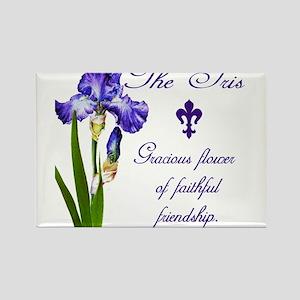 Purple Iris Magnets