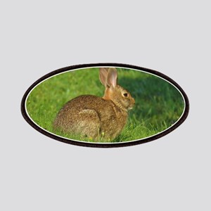 Cottontail Rabbit Patches